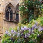 Visiter le Périgord et ses environs : La place des oies à Sarlat