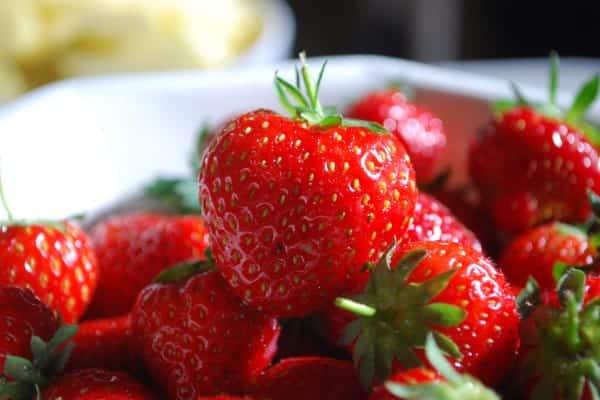 La Gastronomie en Périgord : La fraise du Périgord